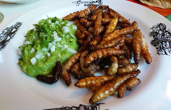 Comidas exóticas en México