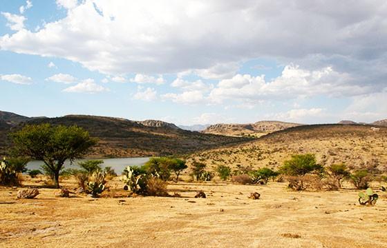 Vista de la presa el Ocote