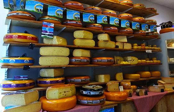principales quesos en Holanda