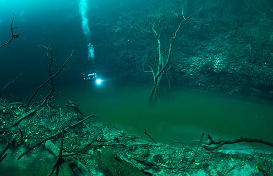 Cenote Angelita Yucatán
