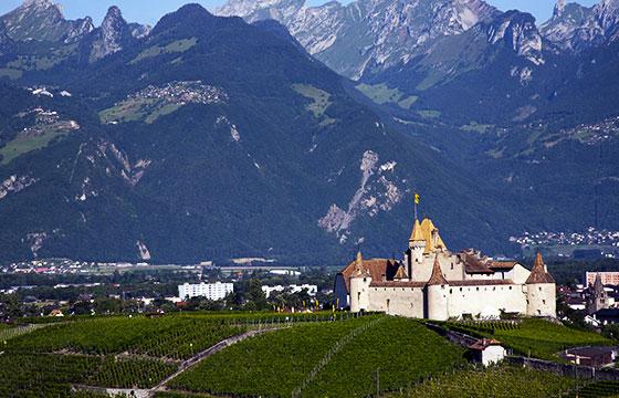 viñedos-suiza