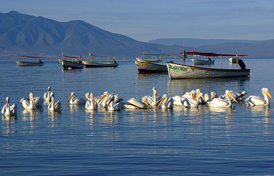 Lago-de-Chapala