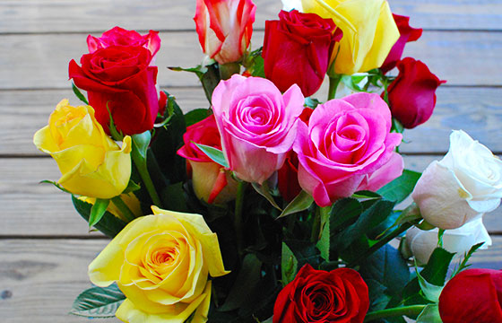 Mother's Day Roses-slgckgc-Flicker