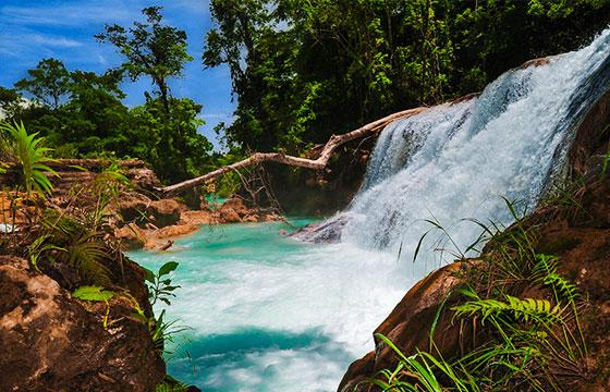 Cascadas de Agua Azul (43)-Eduardo Robles Pacheco-Flickr