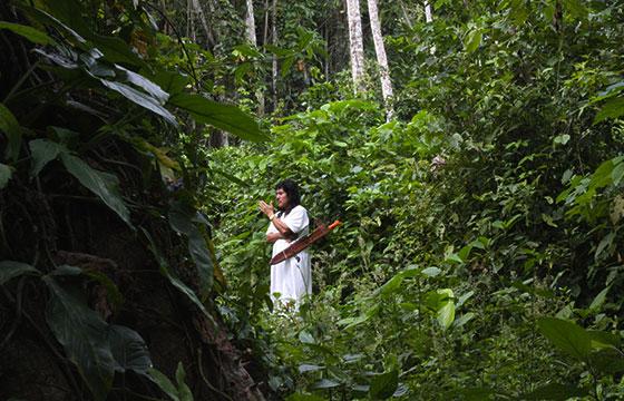 Chiapas, Selva Lacandona-Editada-MandoBarista-http://bit.ly/1KnDFqB-Flickr