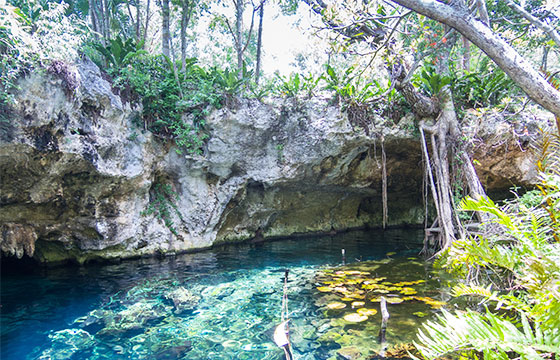 Gran cenote Tulum-dronepicr-Flickr