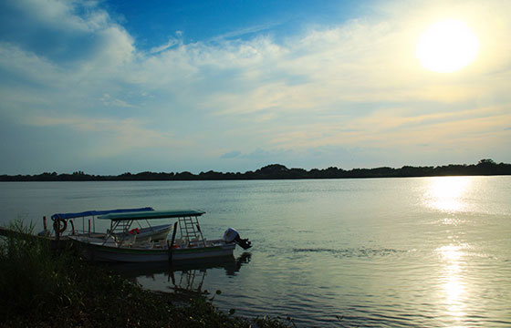 Pantanos de Centla-Editada-Luis Medina-http://bit.ly/1Tx1w8Q-Flickr