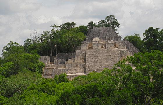 In Calakmul, Mexico-Editada-Pavel Kirillov-http://bit.ly/1ni36yG-Flickr