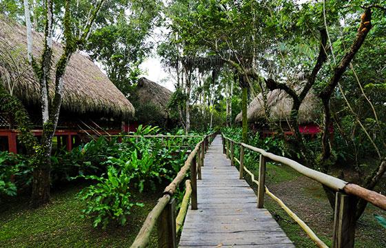 Las Guacamayas-Roberto González-Flickr