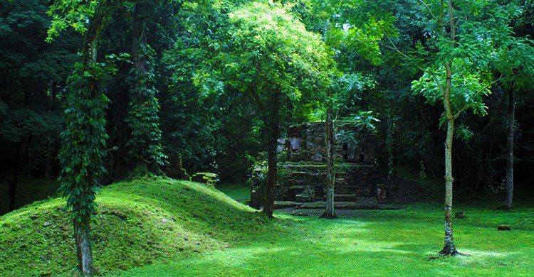 Yaxchilan-Editada-Frank_am_Main-http://bit.ly/2ayrZT7-Flickr