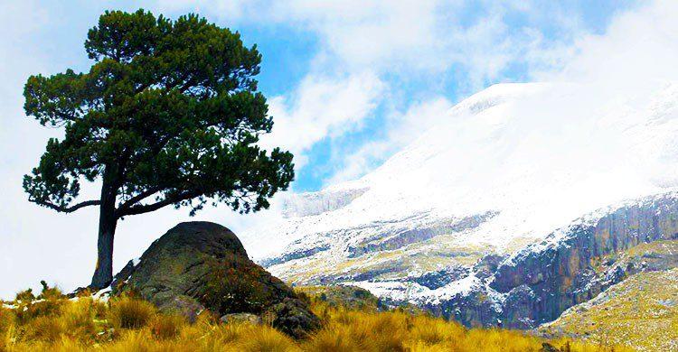 Parque Nacional Iztaccíhuatl—Popocatépetl