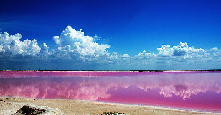 Lago rosa en Yucatán